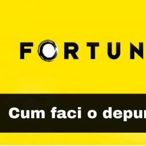 Cum se face o depunere la Fortuna (explicatii si imagini)