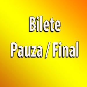 Trei bilete Pauza/Final la Betfair - EURO 2016 - 14 Iunie